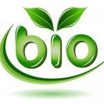 logo-bio500